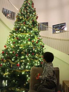 冬,クリスマス,北ドイツ,歌劇場