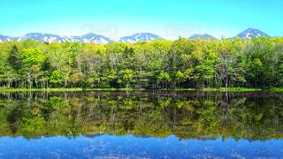 知床五湖の写真・画像素材[899560]