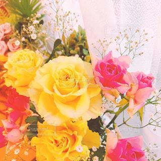 花束の写真・画像素材[619992]