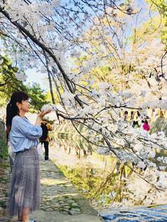 木の隣に立っている人の写真・画像素材[1111918]