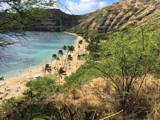 ハワイ - No.488933