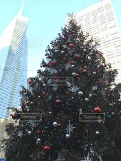 ニューヨーク,クリスマス,ツリー,ブライアントパーク