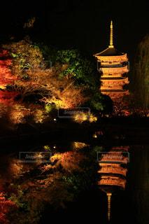 夜,屋外,京都,観光,東寺,お寺,寺,temple,photo,photography,picture