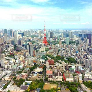 東京ビル東京タワー都会の写真・画像素材[572902]