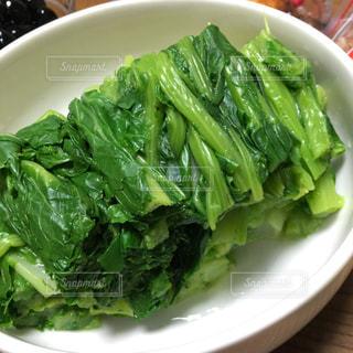 野菜 - No.550683