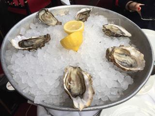 フランス,パリ,牡蠣,前菜,LA ROTONDE