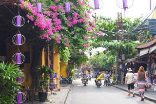 海外,ランタン,旅行,旅,ベトナム,ホイアン,女子旅,海外旅行,ブーゲンビリア