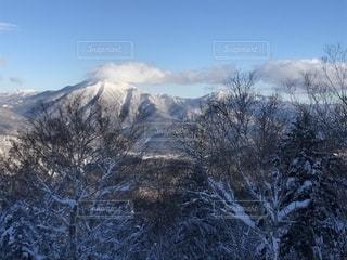自然,空,冬,森林,雪,屋外,雲,山,樹木,高原,くもり,草木,日中,覆う