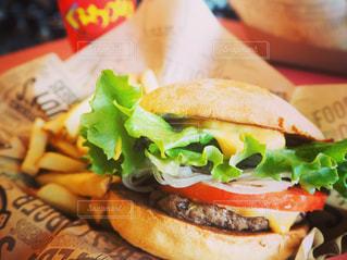 ハンバーガー - No.494247