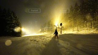 子どもスキーの写真・画像素材[943362]