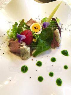 野菜 - No.535424