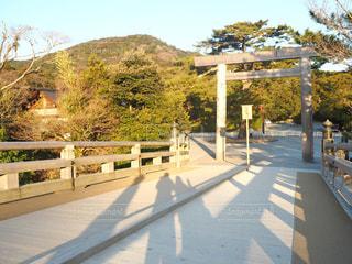 道路の上の橋 - No.945926