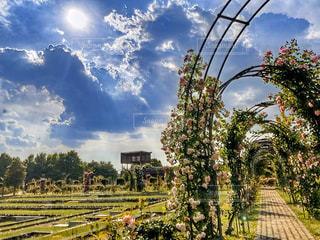 岐阜 庭園での一枚の写真・画像素材[3340498]