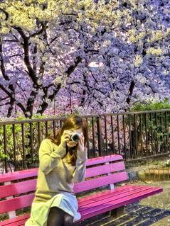 公園のベンチに座っている人の写真・画像素材[3386487]