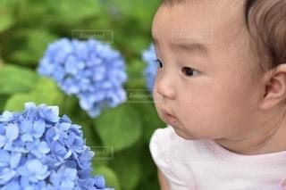 花を持っている人のクローズアップの写真・画像素材[3375006]