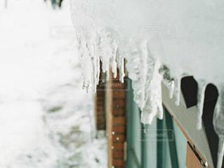 雪,屋外,白,北海道,小樽,日中