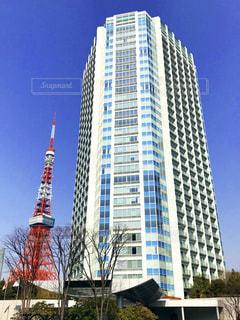 東京タワーとプリンスパークタワーの写真・画像素材[1031772]