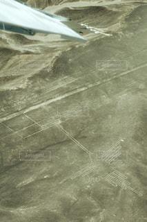 飛行機の写真・画像素材[549747]