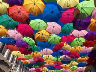 傘の写真・画像素材[580460]