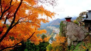 お寺の写真・画像素材[536566]