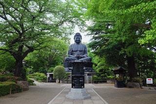 仏像の写真・画像素材[537849]