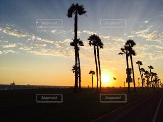 夕暮れ時の都市の景色の写真・画像素材[967729]