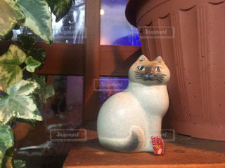 猫,インテリア