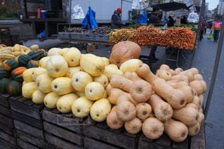 野菜の写真・画像素材[552681]