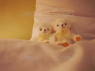 ベッドの上のぬいぐるみの写真・画像素材[869931]