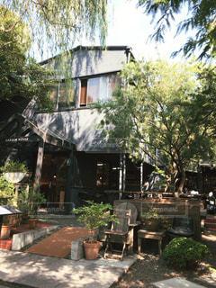 背景の木と家の写真・画像素材[813724]