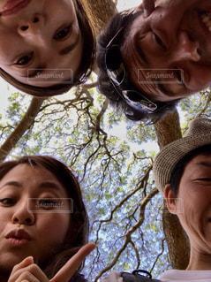 笑顔,ハワイ,日立の木,皆んな