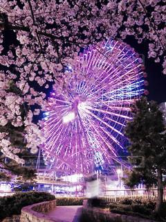空に花火の写真・画像素材[886114]