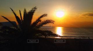 sunset beachの写真・画像素材[959100]