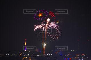 夜空の花火の写真・画像素材[1328307]