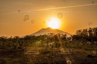 背景の夕日とフィールドの人々 のグループの写真・画像素材[961366]