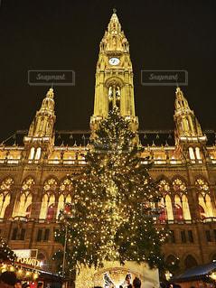 冬,ヨーロッパ,キラキラ,クリスマス,オーストリア,ウィーン,海外旅行,クリスマスツリー,クリスマスマーケット