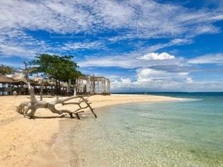 水域の隣の砂浜の写真・画像素材[3339947]