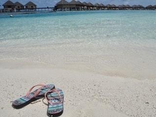 砂浜の上に座っている人の写真・画像素材[3460984]