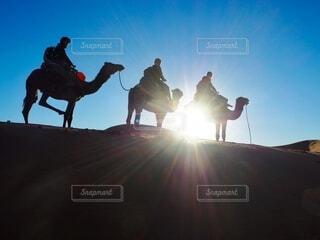 空,絶景,屋外,太陽,朝日,シルエット,人物,人,旅行,ラクダ,正月,お正月,日の出,海外旅行,モロッコ,友達,新年,初日の出,サンライズ,サハラ砂漠,らくだ,サハラ