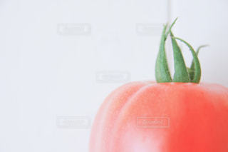 食べ物 - No.522615