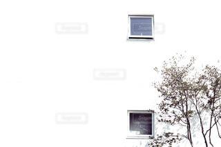 風景の写真・画像素材[537989]