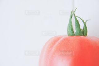 食べ物の写真・画像素材[539910]