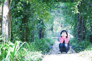 風景 - No.545432