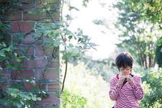 風景 - No.545433