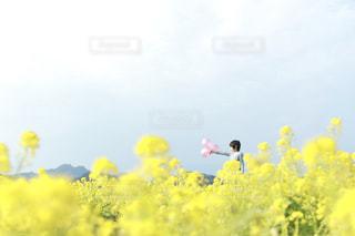 風景 - No.600611