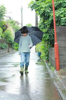 雨の写真・画像素材[836382]