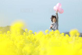 風景,花,春,黄色,菜の花,風船,こども,男の子,静岡,コドモ,大平フラワーロード