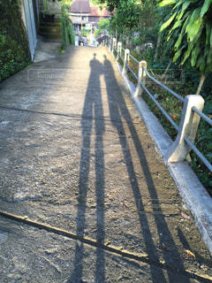 足長夫婦の写真・画像素材[1607408]