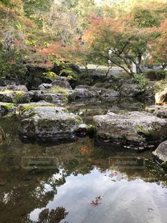 近くに水の体の横にある岩のアップの写真・画像素材[1615717]