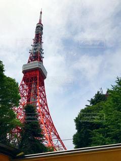 東京タワーの写真・画像素材[526242]